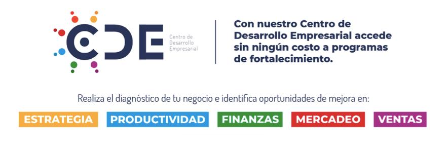 programas para empresas en arranque - CDE - Centro de desarrollo empresarial Progresa