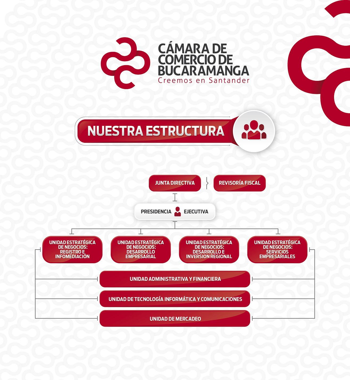 transparencia y acceso a información pública - Estructura Orgánica